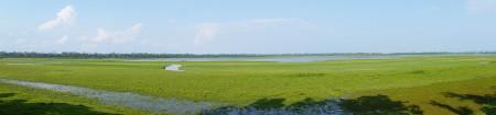 Kaziranga NP Eastern Range