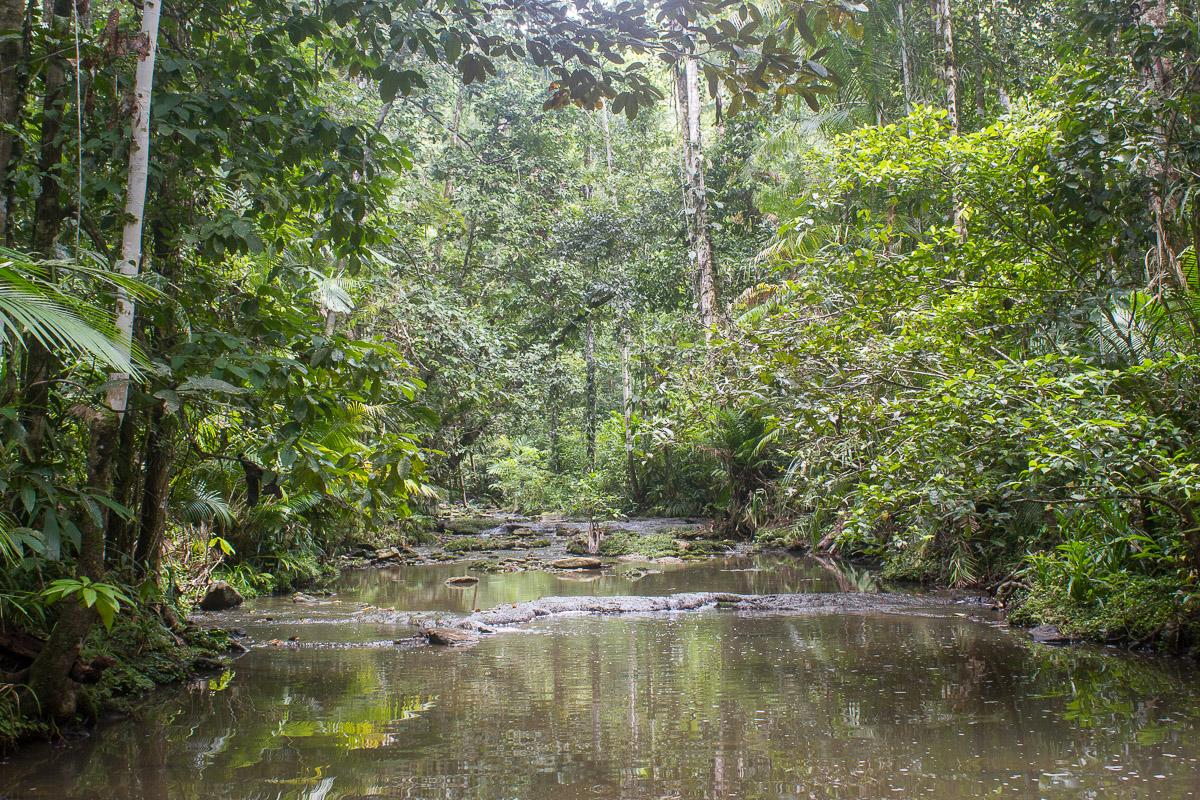Halmahera Limestone Creek