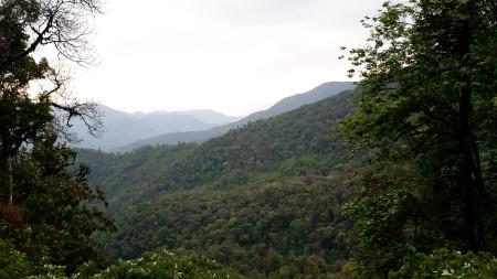 Eaglenest Scenery